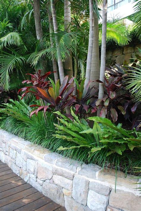 tropical yard plants creative tropical landscaping ideas garden gardenideas landscapeideas picmia