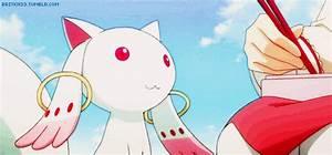 Puella Magi Madoka Magica Cat GIF - Find & Share on GIPHY