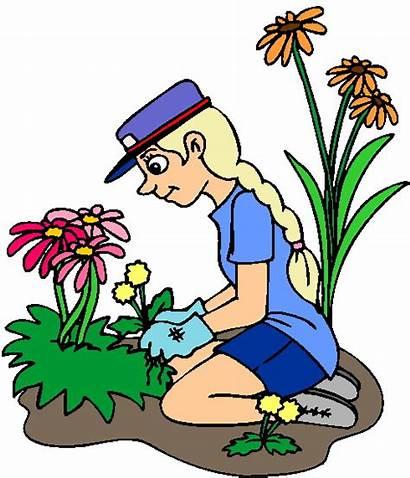 Clip Gardening