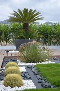 Ideas para diseñar jardines deserticos (11) - Curso de