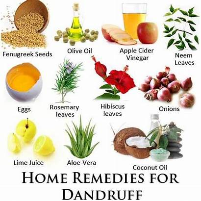 Dandruff Scalp Itchy Treat Flaky Remedies Natural