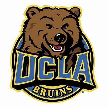 Ucla Bruins Transparent Svg Clipart Bruin University