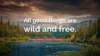Nature Wild Things Quotes Thoreau Henry David