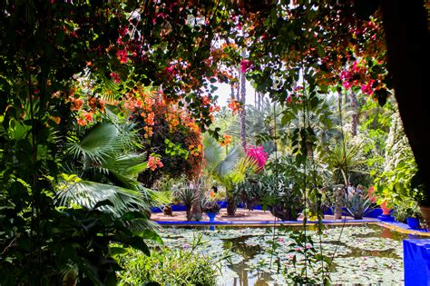 Majorelle Garden  Botanic Garden In Marrakesh Thousand