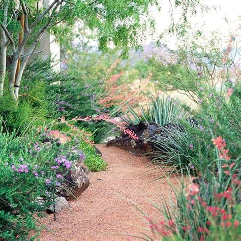 easy care garden ideas easy care desert landscaping ideas