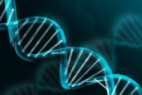 Animated Dna Wallpaper - dna wallpaper 183 free cool high resolution
