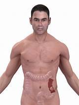I need something that's bodyweight and i am aware that i'd need to rather than being a muscle, its a combination of the location of your hips and certain ligaments in the lower abdomen. left lower abdomen