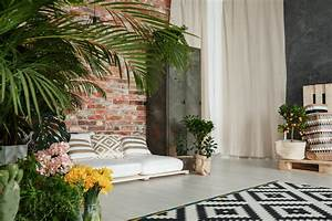 Pflanzen Für Wohnzimmer : sind pflanzen im wohnzimmer noch trend ~ Markanthonyermac.com Haus und Dekorationen
