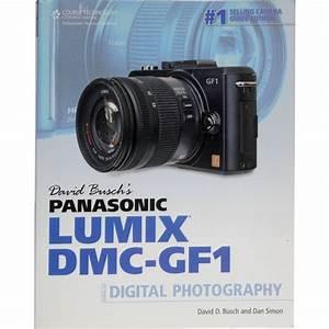Cengage Course Tech  Book  David Busch U0026 39 S Panasonic