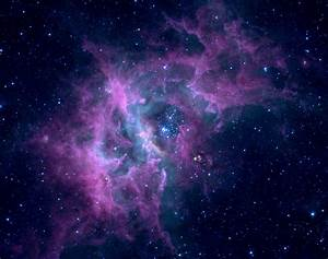 DalaHorse: Lavender Nebula Stellar Ring