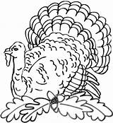 Rug Hooking Thanksgiving Pages Turkey Coloring Designs Uploaded User sketch template