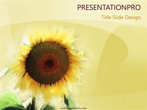sunflower powerpoint template background  agriculture