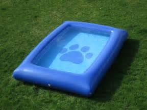 Ultimate Dog Pool Swimming