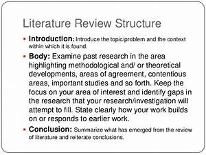 Literature review paper example - Academic Writing ...