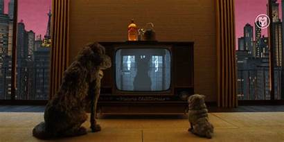 Tv Dogs Watching Searchlight Fox Isle Giphy