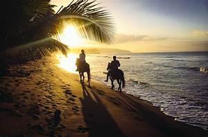 Caribbean Wallpaper: Horseback Riding And The Perfect ...