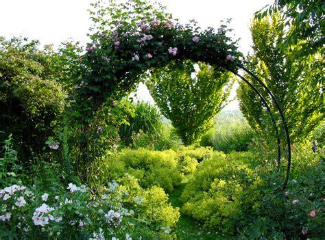 Rosenbogen Im Garten Hilfreiche Tipps Zu Auswahl, Aufbau
