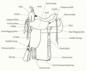 The Equus Ally  Tack  U0026 39 Em Up  The Western Saddle