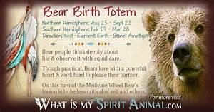 Bear Totem | Native American Zodiac Signs & Birth Signs