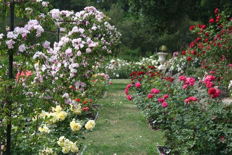 in the garden oakland garden living in the o