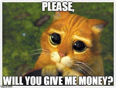 Meme Please - shrek cat memes imgflip