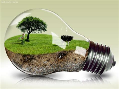 Light Bulb Creative Photo Manipulations