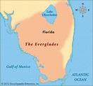 Everglades, The -- Kids Encyclopedia   Children's Homework ...