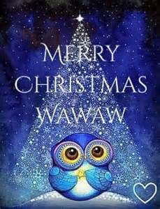 post a wednesday christmas picture sheffield wednesday matchday owlstalk sheffield