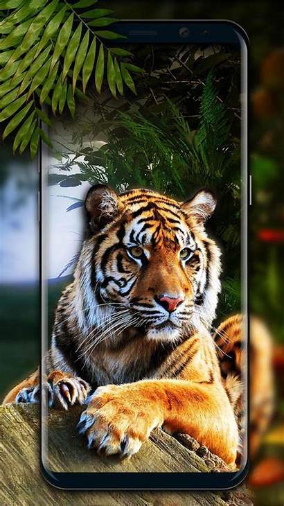 Tiger 3d Android
