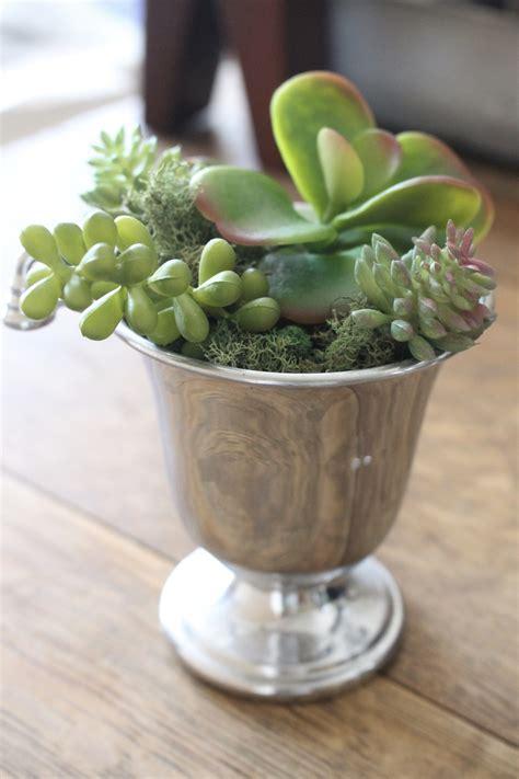How to Make Mini Succulent Arrangements | White Cottage Home & Living