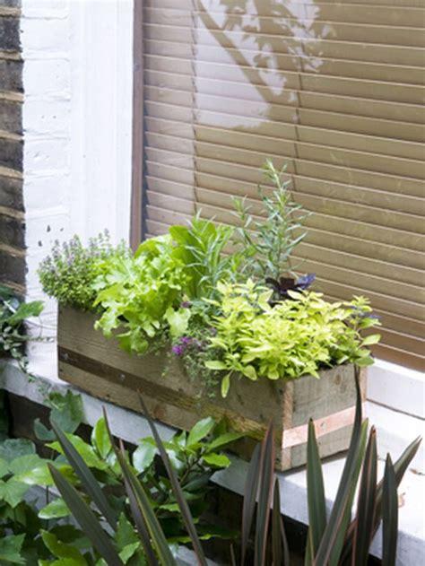 Window Herb Garden by 17 Best Ideas About Small Herb Gardens On