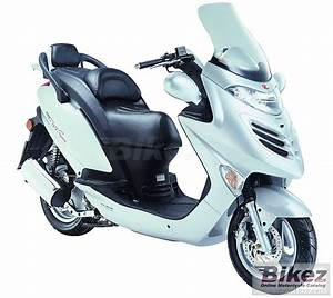 2010 Kymco Grand Dink S 125  Pics  Specs And Information