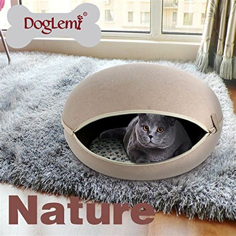 Gbi Tile And Glassdoor by 16 Microfiber Sofas And Cats Doglemi Nature Egg