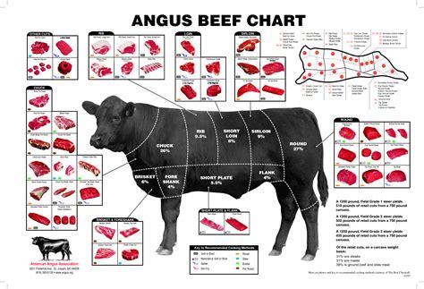what is angus beef quality australian black angus beef macka s