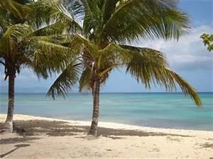 Location Voiture Guadeloupe Comparateur : port louis en images ~ Medecine-chirurgie-esthetiques.com Avis de Voitures