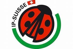Ip Berechnen : vereinfachung f r ip suisse bauern ~ Themetempest.com Abrechnung
