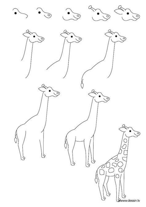 draw  giraffe instructions  eleven steps