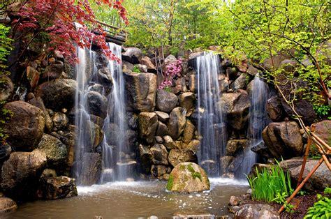 anderson japanese gardens news rockford register