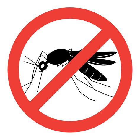 anti moustique des astuces naturelles et efficaces journal des femmes