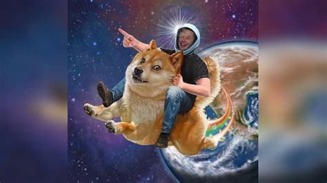 Dogecoin Rides Cryptocurrency Wave to Jump 160 Percent ...