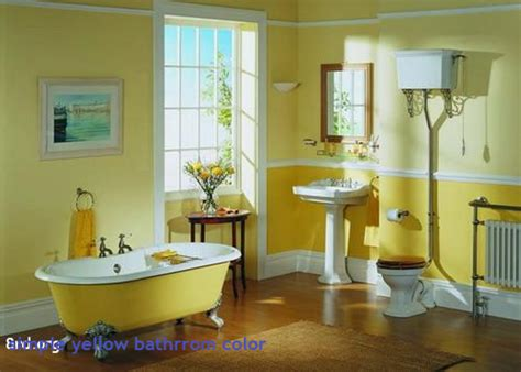 Color For Bathroom 2017 by Bathroom Wonderful Bathroom Paint Color Ideas Behr Paint