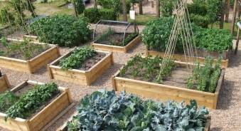 kitchen garden design ideas drink your garden the best garden center in binghamton ny and broome county hillside