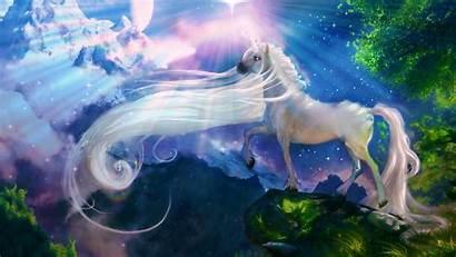 Unicorns Fantasy Desktop Fairies Fairy Artwork Butterfly