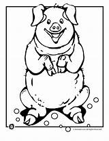 Pig Coloring Happy Send Pages Pigs Email Printer Button Special sketch template