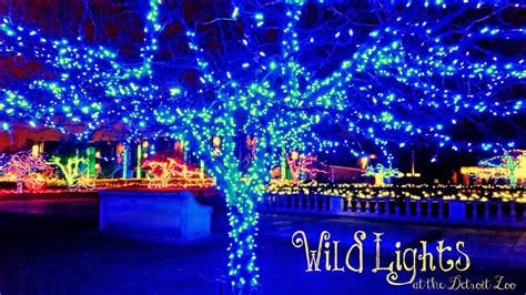 experience childhood at the detroit zoo wildlights