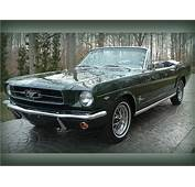 13 Best Images About 1965 Mustang GT On Pinterest  Cars