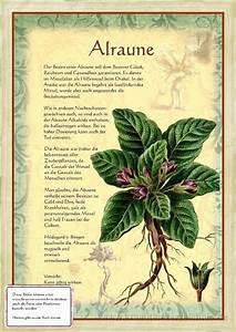 Bücher Zur Gartengestaltung : ber ideen zu gartengestaltung bilder auf pinterest ~ Lizthompson.info Haus und Dekorationen