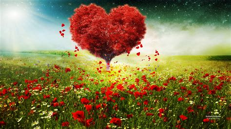 valentines day love heart tree landscape hd wallpapers