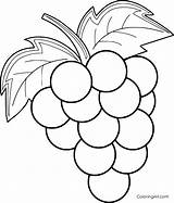 Grapes Coloring Pages Printable Fruit Easy Cartoon Vector Any Adult Device Preschool Sheets Format sketch template