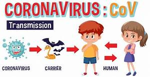 Diagram Showing Coronavirus With Symptoms And Way To